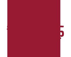 WordCamp Chiclana 2017 Logo
