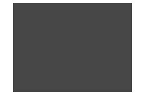 WordCamp Lublin 2017 Logo