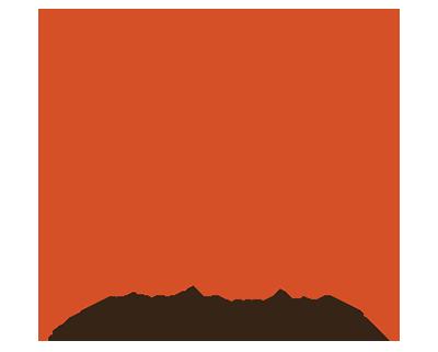 WordCamp Mumbai 2016 Logo
